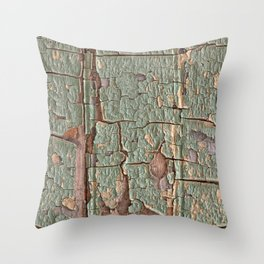 Cracked Wood Paint Throw Pillow