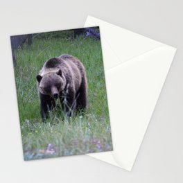 Grizzly mother & cub in Jasper National Park | Canada Stationery Cards