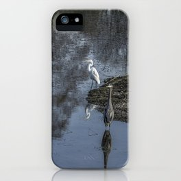 Reflections of My Feathered Friends iPhone Case
