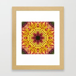 Dahlia 'Jessica' fiery kaleidoscope/mandala Framed Art Print