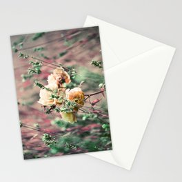 Flowers on Lomochrome Film Stationery Cards