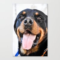 rottweiler Canvas Prints featuring Happy rottweiler by StarsColdNight