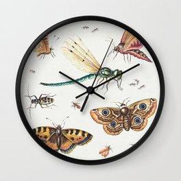Insects, Butterflies, Dragonfly by Jan van Kessel Wall Clock