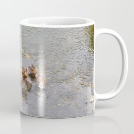 River ducks Coffee Mug