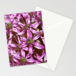 Pink Antennas Calling Home Stationery Cards