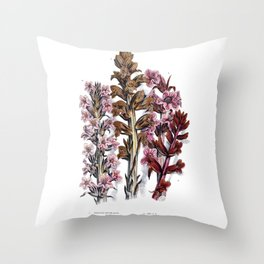 The flowering plants, grasses, sedges, and ferns of Great Britain Throw Pillow