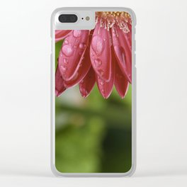 Pink Flower Petals Dripping After Rainfall Clear iPhone Case