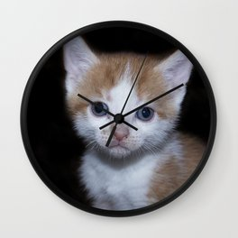 Adorable Baby orange and white tabby kitten Wall Clock