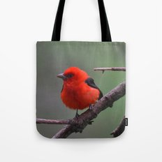 Scarlet Tanager - A Nature Art Print Tote Bag