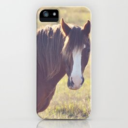 Chesnut Horse iPhone Case