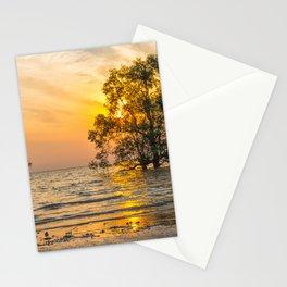 Sunrise over mangrove trees Stationery Cards