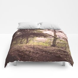 In the Daylight Comforters