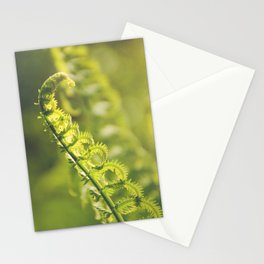 AFE Fern Stationery Cards