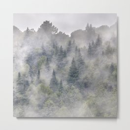 Pinsapos. Into The Woods foggy. Square Metal Print
