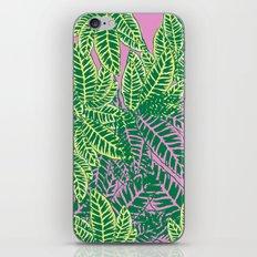Zebra Plant  iPhone & iPod Skin