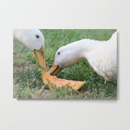 Sharing is Caring Metal Print