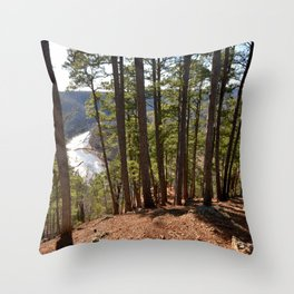 Climbing Up Sparrowhawk Mountain above the Illinois River, No. 7 of 8 Throw Pillow