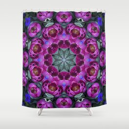 Floral finery - kaleidoscope of blue, plum, rose and green 1650 Shower Curtain