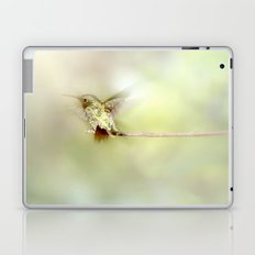 Settle Laptop & iPad Skin
