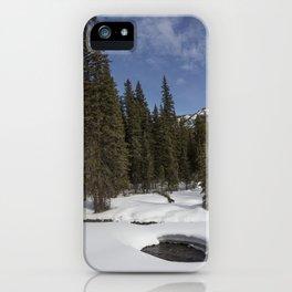 Carol M Highsmith - Winter Forest iPhone Case