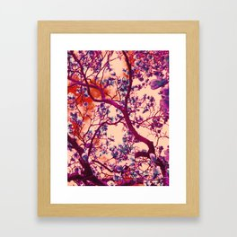 Magnolia Popalia Framed Art Print