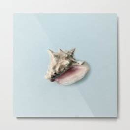Beige and Pink Shell on Aqua Blue Metal Print