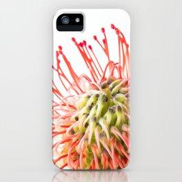 Fynbos Botanical Collection 4 iPhone Case