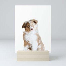 Australian Sheperd Puppy Mini Art Print