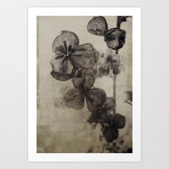 pixie {no.3 Art Print