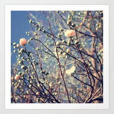 Flower series 01 Art Print