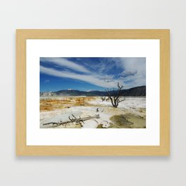 Dry trees on Mammoth Terraces, Yellowstone Framed Art Print
