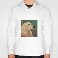 labrador Hoodies featuring Golden labrador by Carl Conway