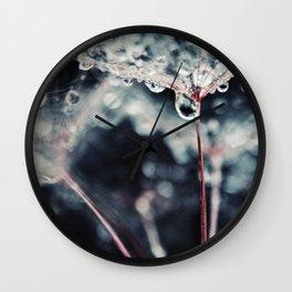 Waterdrops on Dandelion Seeds Macro Abstract Wall Clock