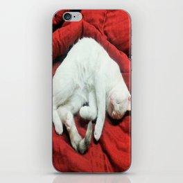 Elektra Caught Napping  iPhone Skin
