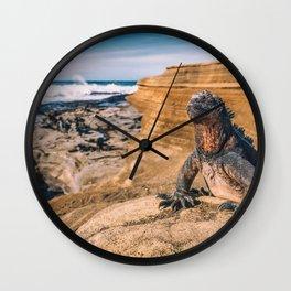 Galapagos marine iguana sun tanning on beach Wall Clock
