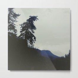 Fog in Millcreek Canyon Metal Print