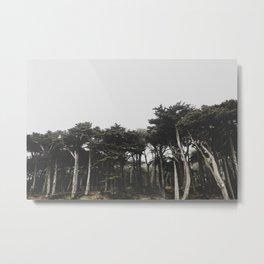 lands end Metal Print