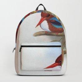 halcyon fusca Backpack