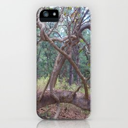 Exotic trees on a desert Island of the Indian Ocean. iPhone Case