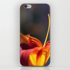 Fire iPhone & iPod Skin