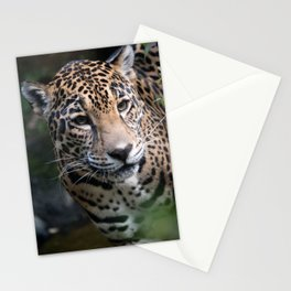 Jaguar Stationery Cards