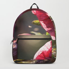 Fairies Dancing in the Light Backpack