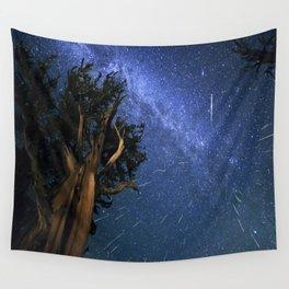 Perseid Meteors Wall Tapestry