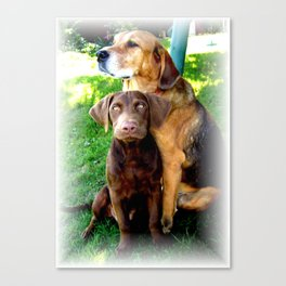 Ain't Nothing But A Hound Dog Canvas Print