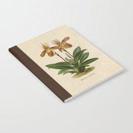 Cypripedium crossianum old plate Notebook