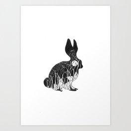 Leporidae Art Print