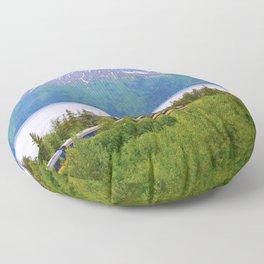 Alaska Passenger Train - Bird Point Floor Pillow