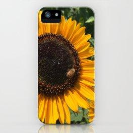 Sunflower and Honeybee iPhone Case