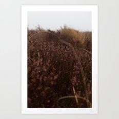 Tongariro Alpine Crossing Art Print