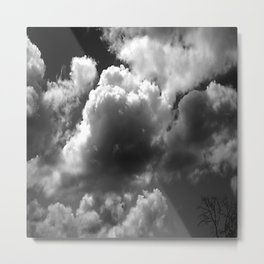 Hello Up There Metal Print